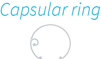 Capsular ring