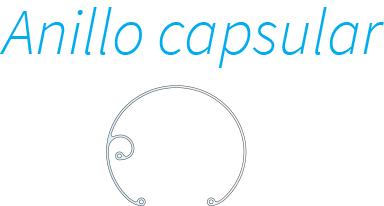 Anillo capsular